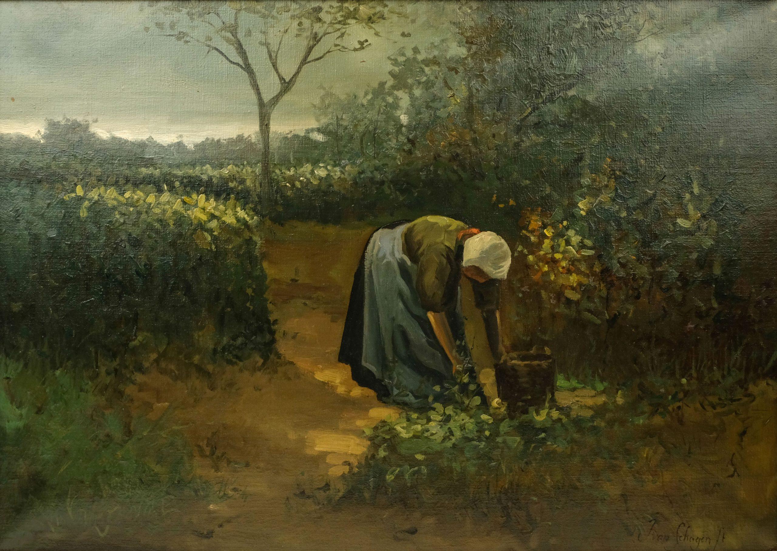 J. van Schagen - In de moestuin